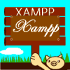 wordpress xampp